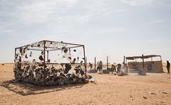 Agadez - Training (International Organization for Migration) Tags: amanda niger training for center international transit migration organization nero integration iom sahel agadez oim worshop