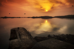 Harbour sunrise (BarryKelly) Tags: red dublin sun bird rocks harbour rise dalkey refelection collimore