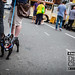 Pug at Kings Heath Dining Club Street Closure