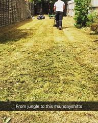 Sunday garden clearances  #wardenstreecare (wardenstreecare) Tags: tree surgery arborist arboriculture instagram