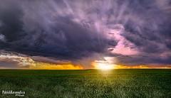 Passing Fancy (Pat Kavanagh) Tags: panorama canada storm landscape alberta prairie prairies hdr stormclouds stormchasing taber stormchaser passingfancy
