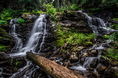 Peaceful Rest Spot (charliepnwphotography) Tags: hiking outdoor outdoors trees treeporn serene secluded pnw pacific northwest montana idaho revett lake exploring adventure adventuring explore discover beauty wanderlust nikon amateur blossom pear waterfall waterfalls amazing gorgeous calm nature