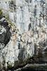 (Fjola Dogg) Tags: sea summer naturaleza nature canon landscape island iceland islandia natureza natur natuur natura nopeople atlanticocean ísland náttúra islande izland haf islanda lanature evropa islândia naturen ijsland 50d naturae naturalesa islanti breiðafjörður islando westiceland canon50d vesturland evrópa izlanda sæferðir atlantshaf lislande fjoladogg northernatlanticocean ãsland fjóladögg islann