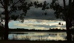 Lake Guthridge [Explored] (phunnyfotos) Tags: phunnyfotos australia victoria vic gippsland sale lake lakeguthridge silhouette trees nikon d750 nikond750 reflection evening frame framed landscape waterscape