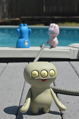 Too...much....water...! (MAPow/MaryAnne) Tags: water pool tray cinco uglydoll wedgehead summerisalmosthere cincoreallyreallydoesntlikewater