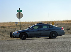 Lincoln County Sheriff, Washington (AJM NWPD) (AJM STUDIOS) Tags: rural washington side policecar wa sheriff ajm 2012 easternwashington speedtrap trafficenforcement chevroletimpala chevyimpala lincolncounty almira hidingspot 2013 nwpd lcso lincolncountysheriff almirawashington ajmstudiosnet northwestpolicedepartment nleaf ajmstudiosnorthwestpolicedepartment ajmnwpd lincolncountysheriffwashington northwestlawenforcementassociation ajmstudiosnorthwestlawenforcementassociation lincolncountysheriffsoffice lincolncountywasheriff lincolncountysheriffwa lincolncountywashingtonsheriff lincolncountysheriffphotos lincolncountysheriffpictures lincolncountysheriffsofficeunits lincolncountysheriffcar almirasheriff almiralawenforcement