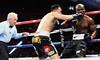 "Bradley vs. Provodnikov <a style=""margin-left:10px; font-size:0.8em;"" href=""http://www.flickr.com/photos/95369066@N04/9080766119/"" target=""_blank"">@flickr</a>"