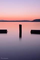 purple evening (SharmaPunit) Tags: seattle pink sunset lake water beautiful evening flickr purple renton silkysmooth nikondslr loveromance genecoulon nikon7100