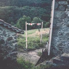 LE BONHEUR EST DANS LE PR (jean-fabien) Tags: france 6x6 vintage square champs fujifilm campagne carr fragment dtail ardche pr 500x500 atmosphre x100s