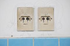 Siemens sisters (Scilla sinensis) Tags: siemens plug switches voltage
