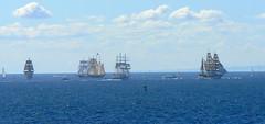 Farewell to The Tall Ships... (The Pocket Rocket) Tags: europa australia victoria lordnelson portphillipbay 467 pointlonsdale tecla oosterschelde sorenlarsen explore467 windewardbound thetallships