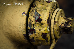 Chipped Paint (OmegaMoth) Tags: city urban color lines yellow architecture arlington hydrant virginia nikon shapes september firehydrant arlingtonva chippedpaint 2013 d7000 nikond7000 sugarcrashphotography