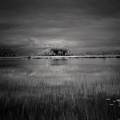 Midnight water (c e d e r) Tags: trees lake water night clouds sweden jämtland