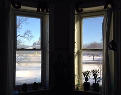 Matin Blanc Window View (Graham Coreil-Allen) Tags: winter snow silhouette baltimore windowview druidhillpark thecountdown auchentoroly uploaded:by=flickrmobile flickriosapp:filter=nofilter