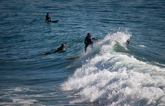 Surfing Santa Monica - California (ChrisGoldNY) Tags: california usa water america canon poster la losangeles surf waves forsale pacific santamonica surfing pacificocean socal posters beaches albumcover bookcover southerncalifornia westcoast bookcovers albumcovers licensing laist losangelescounty chrisgoldny chrisgoldberg chrisgold chrisgoldphoto chrisgoldphotos