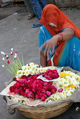 Flower Seller (cowyeow) Tags: street travel flowers woman india composition temple candid indian traditional culture covered selling rajasthan udaipur flowerseller