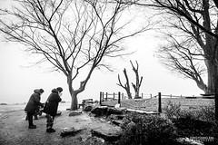 _JYP4187-1_RS1200 (doorumie) Tags: morning blackandwhite woman mist tree misty fog river blackwhite asia riverside pray foggy korea clam southkorea drizzle hangang dumulmeori yangsuri