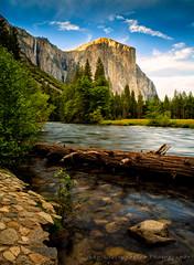 Yosemite National Park (JGiatrop) Tags: yosemitenationalpark nationalparks valleyview gatesofthevalley giatropoulos {vision}:{mountain}=0633 {vision}:{plant}=0638 {vision}:{outdoor}=0802 {vision}:{sunset}=0517 {vision}:{sky}=0767