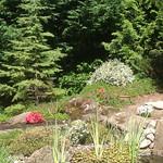 "Myrtle and applewood hills <a style=""margin-left:10px; font-size:0.8em;"" href=""http://www.flickr.com/photos/117326093@N05/12824375014/"" target=""_blank"">@flickr</a>"