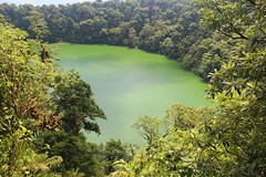 Costa Rica (joeksuey) Tags: birds volcano costarica arenalobservatorylodge currasow joeksuey