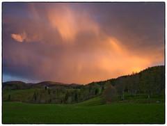 Malvik in May #5 (ver. 2) (Krogen) Tags: nature norway landscape norge spring natur norwegen olympus c7070 noruega vår krogen landskap noorwegen noreg trøndelag malvik buaasen