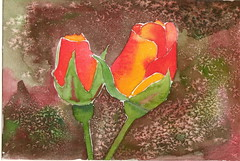 "Duel tulip buds card <a style=""margin-left:10px; font-size:0.8em;"" href=""https://www.flickr.com/photos/66157425@N08/14091613436/"" target=""_blank"">@flickr</a>"