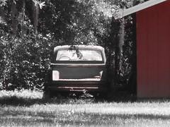 old abandonned pickup truck (Squash Goddess) Tags: old barn truck pickuptruck abandonned