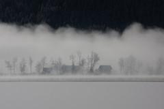 Weissensee - zon en mist in de ochtend (Andrea van Leerdam) Tags: winter sneeuw weissensee natuurijs