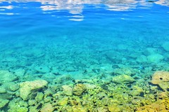 Edirne / Turkey (dilekbal0922) Tags: blue sea fish green water nice turquoise great clean clear