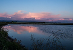 untitled-2.jpg (Dan Brekke) Tags: california water sacramentovalley clouds