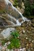 Wiñay Wayna (duyphamuci) Tags: peru inca trail machu picchu wiñay wayna