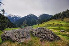 Aru valley (Debmalya Mukherjee) Tags: meadows hdr jammuandkashmir pahalgam 1018mm canon550d aruvalley debmalyamukherjee