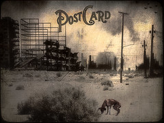 From future with love (bdira3) Tags: dog ruins moody card conceptual textured hopeless desolated
