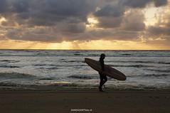 DSC03273 (ZANDVOORTfoto.nl) Tags: sunset surf surfer noordzee zee zon zandvoort alg ondergaande zeeschuim wavesurfer zandvoortfotonl zandvoortfoto