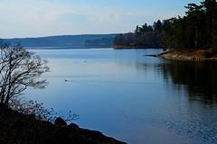 DSCF4931 (Peter Ghita) Tags: lake landscape spring seasons fujinonxf1855mmf284rlmois fujifilmxt1