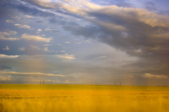 One of June's evenings memories (Fabien Husslein) Tags: sky france nature field june clouds canon landscape evening countryside juin country souvenir ciel faded memory agriculture f18 nuages paysage soir cereales lorraine campagne pays messin flou champ moselle