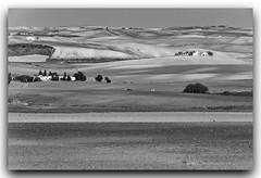 jlvill 390 (jlvill) Tags: panorama blanco rural negro campo 1001nights agro campia monocolor 1001nightsmagiccity blackwhitepassionaward