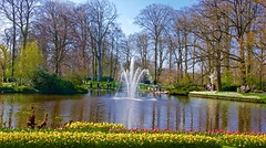 Spring bloom at Keukenhof gardens (somabiswas) Tags: flowers fountain netherlands amsterdam gardens spring iamsterdam keukenhof