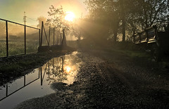 A gorgeous sunrise reflected in the previous day's rainpuddle (VillaRhapsody) Tags: light sun mist water rain fog sunrise reflections turkey landscape puddle dawn spring foggy rays fethiye kayaky