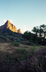 Zion National Park (somer_) Tags: zionnationalpark nationalpark outdoors adventure utah film 35mm kodak kodakektar100 southwest zion sunset watchman