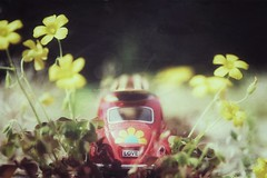 love bug (s@ssyl@ssy) Tags: flowers car vw toy miniature weeds hippy retro driveway hss slugabug sliderssunday
