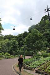 IMG_1437 (swanze2019) Tags: japan tram kobe ropeway herbgardens