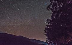 Stars in Munnar sky ([s e l v i n]) Tags: sky india night stars star kerala nightsky nightlife munnar milkyway keralatourism keralatravel picturesofkerala selvin