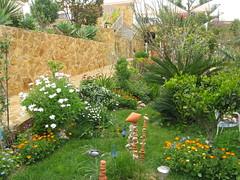 Im Garten 003 (wilhelm.haardt) Tags: antjes blumen peniscola imgarten