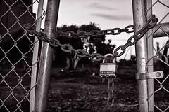 The gap (TwinCitiesSeen) Tags: blackandwhite minnesota lock minneapolis semi chain twincities tamron2875mm canont3i twincitiesseen