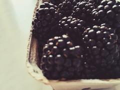 (ekaterinasmolyannikova) Tags: black blackberry
