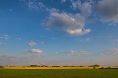 Morning on the Countryside (Infomastern) Tags: morning sky cloud landscape countryside morgon landskap sdersltt landsbygd gislv