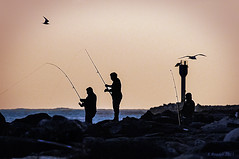 Three Fishermen at Twilight (Greatest Paka Photography) Tags: ocean light sunset shadow fish silhouette sport coast twilight fishing rocks jetty shoreline pacificocean halfmoonbay saltwater breakwater princetonharbor shorefishing