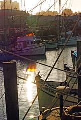 Fishermans Wharf10252007 (4) (digifotovet) Tags: sanfrancisco california boat fishing fishermanswharf