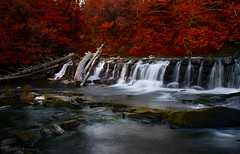 Pomperaug River Connecticut (Doreencpa) Tags: longexposure autumn fall water creek river landscape waterfall stream outdoor d500 watercourse ndfilter nikonafs200500